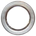 Vintage Round Metallized Frame