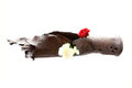 Vintage rusted bomb shot projectile shell world war ii exploded with fowers in hole on white Stock Photos