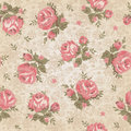 Vintage seamless floral pattern illustration Royalty Free Stock Photo