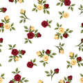 Vintage seamless pattern with roses small on a white background Royalty Free Stock Photo