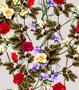 Vintage seamless pattern with roses . Vector illustration. Royalty Free Stock Photo