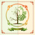 Vintage seasons template with subtle colors change from Spring to Summer Royalty Free Stock Photo