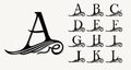 Vintage Set 1. Calligraphic capital letters with curls for Monograms, Emblems and Logos.