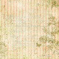 Vintage shabby chic pink striped background with floral frame and butterfly Royalty Free Stock Photo
