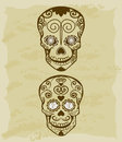 Vintage sketch of sugar skull Stock Images