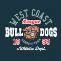 Vintage sport varsity apparel design bulldogs textured team t shirt graphic athletic department grunge effect easy removable from Stock Photo