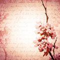 Vintage spring blossom background in pink copyspace Royalty Free Stock Photography
