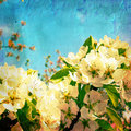 Vintage spring textured background Royalty Free Stock Image