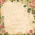 Vintage style botanical floral framed background Royalty Free Stock Photo
