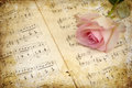 Vintage style pink rose with music notes textured picture of a on old sheets of Stock Images