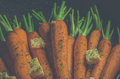 Vintage style rustic carrotts image of carrots with butter and herbs in a pan Stock Images