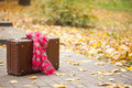 Vintage suitcase with pink scarf on alley in autumn park Royalty Free Stock Photos