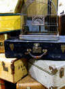 Vintage suitcases a stack of with a birdcage on top Royalty Free Stock Image