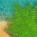 Vintage summer illustration with ocean beach and vector retro background palm leaves Royalty Free Stock Photos