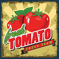 Vintage tomato vector color sign or poster Stock Photos