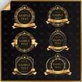 Vintage vector set black frame label gold elements crown Stock Images
