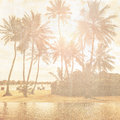 Vintage wallpaper grunge style photo of beautiful tropical beach palm trees in bright sun light exotic nature summer holiday and Stock Photos