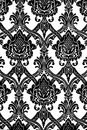 Vintage wallpaper pattern in black and white background Stock Image