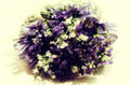 Vintage wedding bouquet close up of made of white and violet flowers Royalty Free Stock Photography
