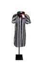 Vintage White and Black Stripe Fur Coat Royalty Free Stock Photo
