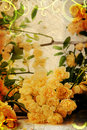 Vintage yellow roses Royalty Free Stock Images