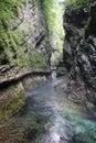 Vintgar Gorge Royalty Free Stock Photography