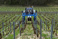Vintner drives a tractor in vineyard france province department aube region champagne ardennes district troyes rows grapevines on Stock Image