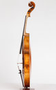 Viola old italian anno stradivari Stock Photography
