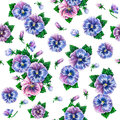 Viola tricolor. Watercolor colorful pansies flowers drawing. Watercolor seamless flowers pattern Royalty Free Stock Photo