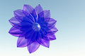 Violet beautiful flower Royalty Free Stock Images