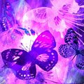 Violet Butterfly Grunge Royalty Free Stock Photography