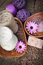 Violet dayspa nature set Royalty Free Stock Images