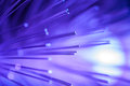 Violet fiber optic. Stock Photos