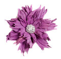 Violet flower in leather handmade Royalty Free Stock Image