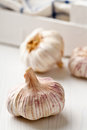 Violet garlic french on wooden cooking board Royalty Free Stock Images