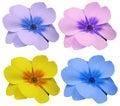 Violets Flowers Set Yellow Blu...
