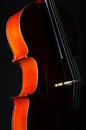 Violin on the black background Stock Photo