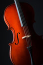 Violin on the black background Stock Photos