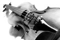 Violin in black and white on the ground Royalty Free Stock Photography