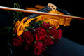 Violin on carry case red with with red roses Stock Image