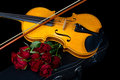 Violin on carry case red with sheet music with red roses Stock Photos