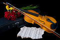 Violin on carry case red with sheet music with red roses Royalty Free Stock Photos