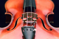 Picture : Violin close up hand doctor cucumbers