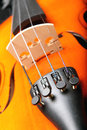 Violin closeup image of a Royalty Free Stock Photography
