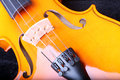 Violin closeup image of a Royalty Free Stock Photo