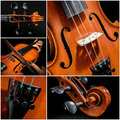 Violin collage with five detail images of a Stock Photos