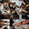 Violin detail musicians to play a symphony collage Royalty Free Stock Image