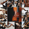 Violin detail musicians to play a symphony collage Royalty Free Stock Photography