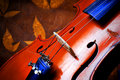 Violin details Royalty Free Stock Images