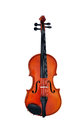 Violin front view isolated on white Royalty Free Stock Photos